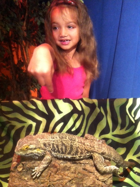 Robert  stayed about ten feet away from this lizard, but Ava wanted to get up close