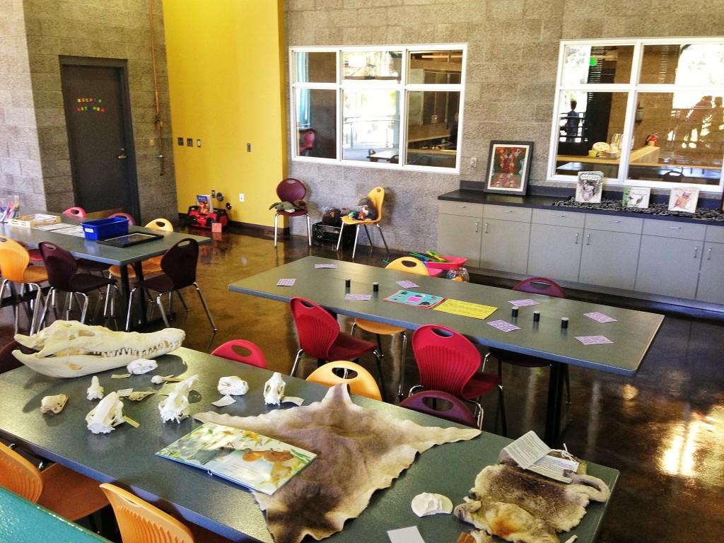 The Aussie Classroom