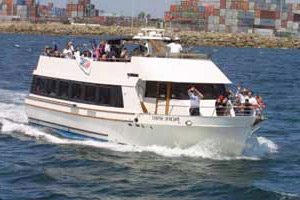 free-harbor-cruise