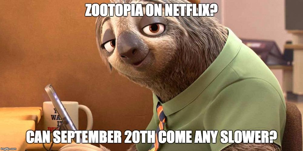 zootopia-meme-1
